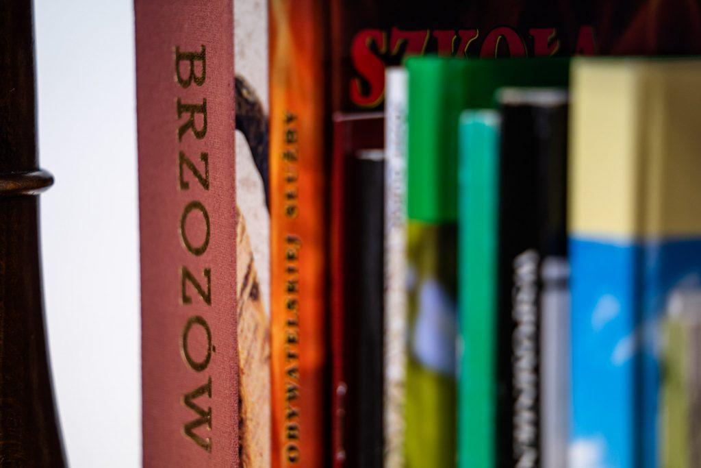 Książki z kolorowymi grzbietami ustawione pionowo na półce
